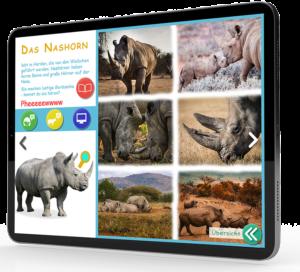 Cortea Interaktive Kinderbücher Tiere Afrikas