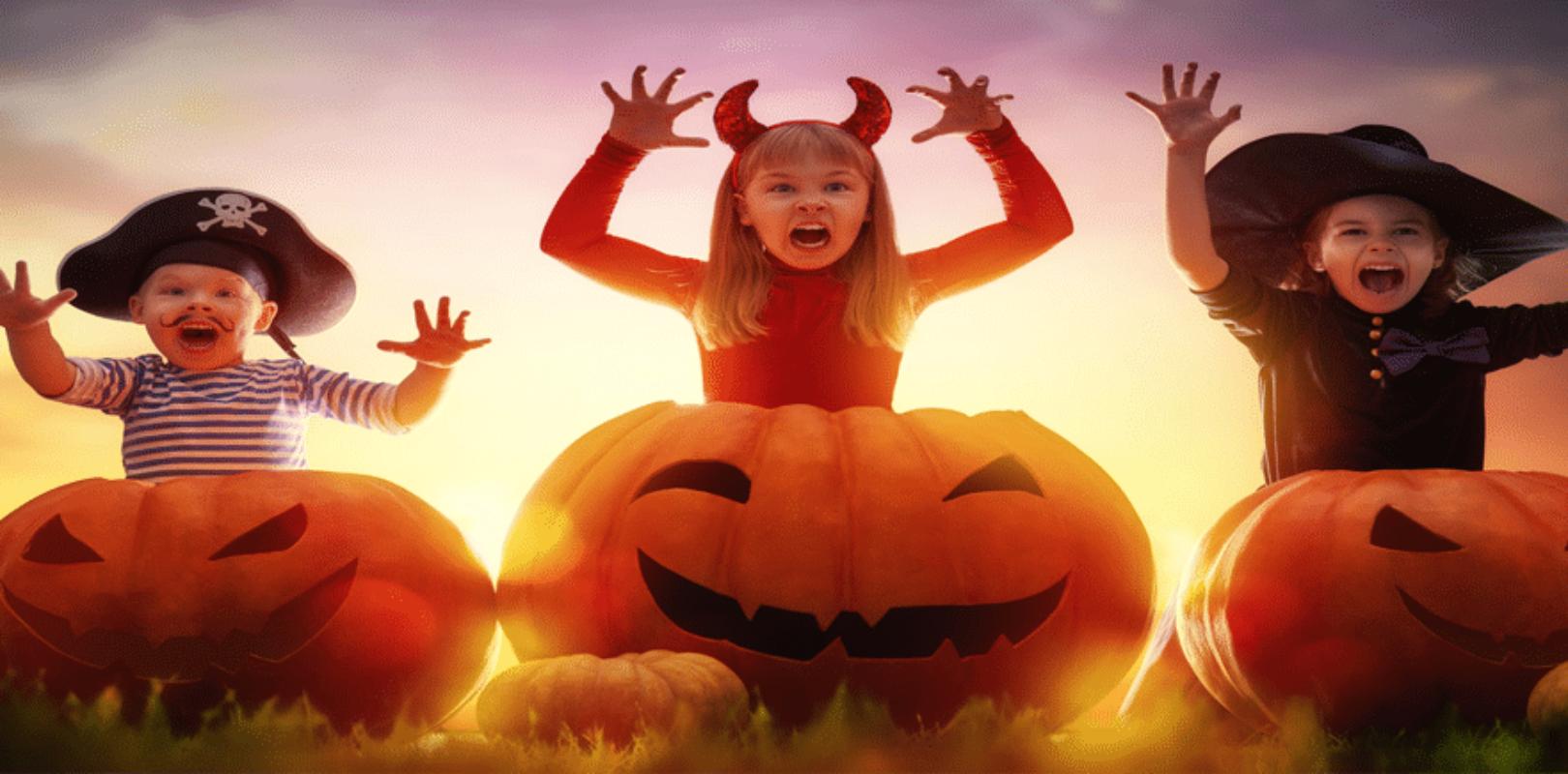 Bild Halloween mit Kinder