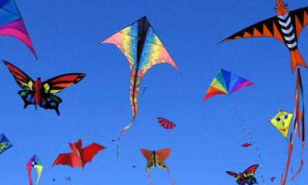 Lenkdrachen & Lenkmatten: Drachenstarker Flugspaß