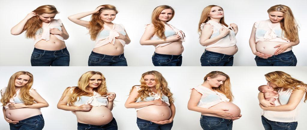 Bild einer schwangeren Frau in den verschiedenen Schwangerschaftswochen